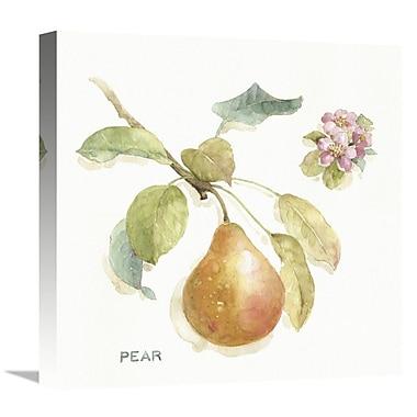 East Urban Home 'Orchard Bloom II' Print on Canvas; 24'' H x 24'' W