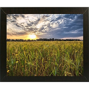 Winston Porter 'Final Sunset' Photographic Print; Brazilian Walnut Wood Medium Framed Paper
