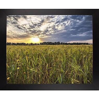 Winston Porter 'Final Sunset' Photographic Print; Black Wood Large Framed Paper