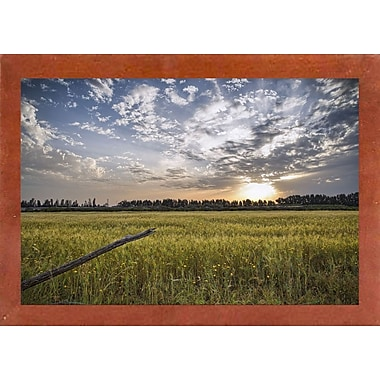 Winston Porter 'End of Day' Photographic Print; Canadian Walnut Wood Medium Framed Paper