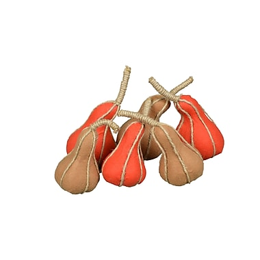 GT DIRECT CORP Rope Wrapped Felt Gourd Assortment (Set of 6)
