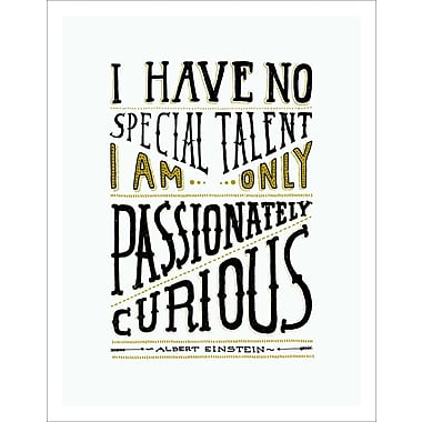 Varick Gallery 'I Have No Special Talent' Textual Art on Wrapped Canvas; 16.5'' H x 11.5'' W x 1'' D