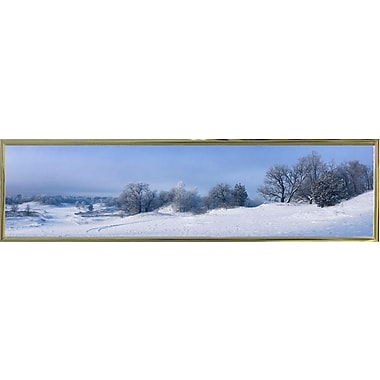 Alcott Hill 'Panorama Winter Dunes' Photographic Print; Gold Metal Framed Paper