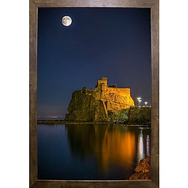 East Urban Home 'Under the Moon' Photographic Print; Cafe Mocha Framed Paper