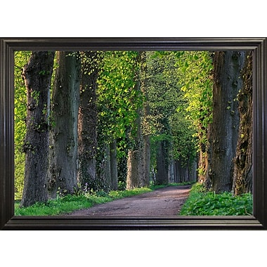 Charlton Home 'Light Green Forest Road' Photographic Print; Black Wood Grande Framed Paper