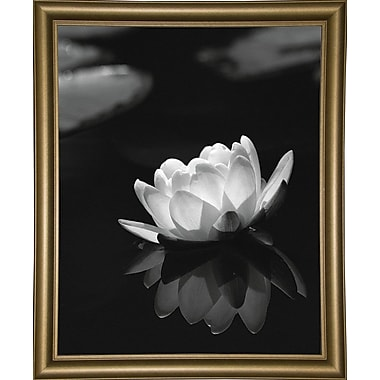 Ebern Designs 'Water Lily Black and White' Photographic Print; Paper
