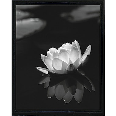Ebern Designs 'Water Lily Black and White' Photographic Print; Black Metal Flat Framed Paper