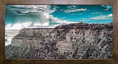 East Urban Home 'My New Sunglasses' Photographic Print; Cafe Mocha Framed Paper