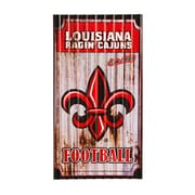 Team Sports America NCAA Corrugated Graphic Art Print on Metal; Louisiana Lafayette