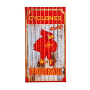 Team Sports America NCAA Corrugated Graphic Art Print on Metal; Iowa State