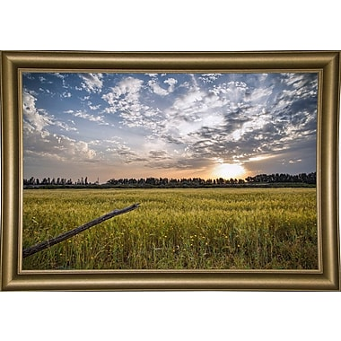 Winston Porter 'End of Day' Photographic Print; Bistro Gold Framed Paper