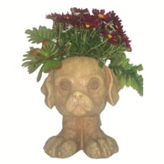 HomeStyles Muggly Muttley the Dog Animal Statue Planter; Stone Wash