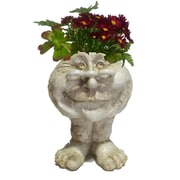HomeStyles Muggly The Face Grandma Rose Statue Planter; Antique White