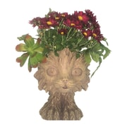 HomeStyles Muggly Scruffy the Cat Animal Statue Planter; Stone Wash