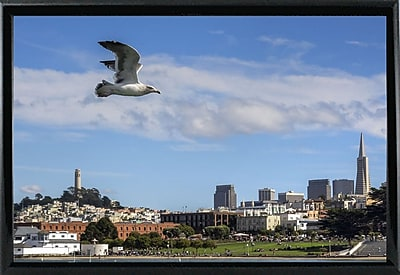 East Urban Home 'Over SF' Photographic Print; Black Metal Framed Paper