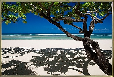 East Urban Home 'Shadows on the Beach' Photographic Print; Gold Metal Framed Paper