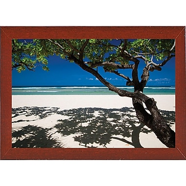 East Urban Home 'Shadows on the Beach' Photographic Print; Red Mahogany Wood Medium Framed Paper