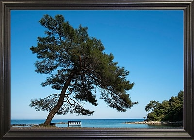 East Urban Home 'Tree at the Sea' Photographic Print; Black Wood Grande Framed Paper