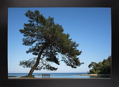 East Urban Home 'Tree at the Sea' Photographic Print; Black Wood Large Framed Paper