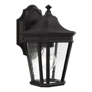 Darby Home Co Chilhowee 1-Light Wall Outdoor Lantern