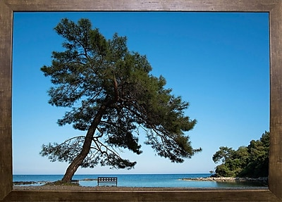 East Urban Home 'Tree at the Sea' Photographic Print; Cafe Mocha Framed Paper