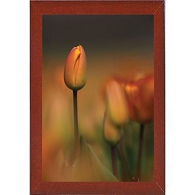East Urban Home 'Tulip No 5' Graphic Art Print; Red Mahogany Wood Medium Framed Paper