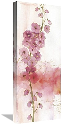 East Urban Home 'Rainbow Seeds Absract Floral I' Print on Canvas; 40'' H x 16'' W