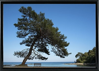 East Urban Home 'Tree at the Sea' Photographic Print; Black Metal Framed Paper