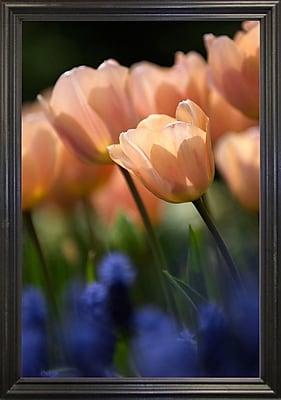 East Urban Home 'Tulip No 1' Photographic Print; Black Wood Grande Framed Paper