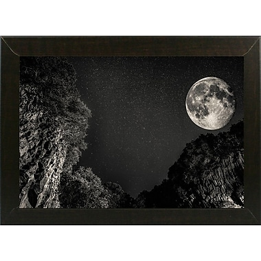 Ebern Designs '39' Photographic Print; Brazilian Walnut Wood Medium Framed Paper