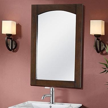 Latitude Run Siniard Arched Top Wall Mirror; 34'' H x 24'' W x 1'' D