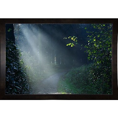 Winston Porter 'Beam of Light' Photographic Print; Black Wood Medium Framed Paper