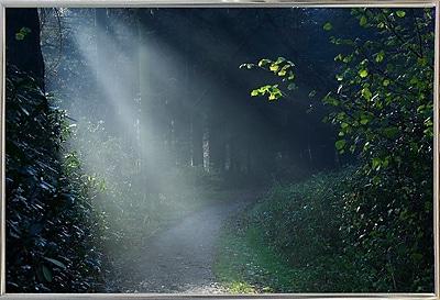 Winston Porter 'Beam of Light' Photographic Print; Silver Metal Framed Paper