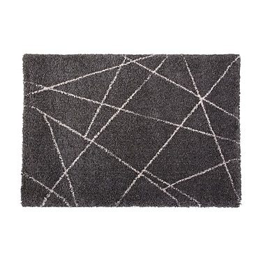 Brayden Studio Tefft Charcoal/Ivory Indoor/Outdoor Area Rug; Rectangle 5' x 8'