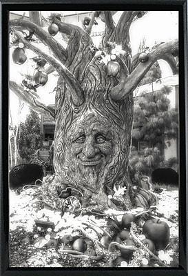Ebern Designs '35' Graphic Art Print; Rolled Canvas