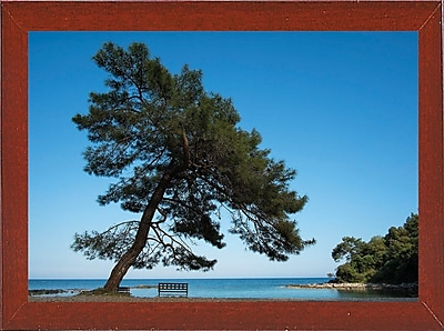 East Urban Home 'Tree at the Sea' Photographic Print; Red Mahogany Wood Medium Framed Paper