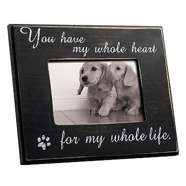Winston Porter Linthicum Cat or Dog Wall Picture Frame