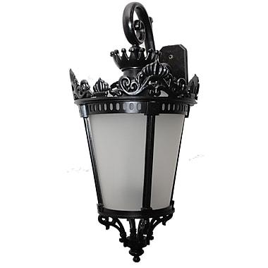 Astoria Grand Worrell 3-Light Outdoor Wall Lantern; Old Bronze