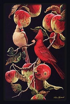 Toland Home Garden Orchard Cardinals 2-Sided Garden Flag