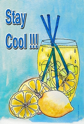 Toland Home Garden Stay Cool Lemonade Garden Flag