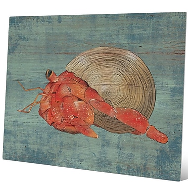 Click Wall Art 'Hermit Crab Walking Left Nautical' Painting Print on Metal; 20'' H x 30'' W x 1'' D