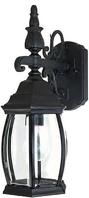 Alcott Hill Herkimer Rustic 1-Light Outdoor Wall Lantern; Black