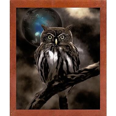 Bloomsbury Market 'Night Owl' Graphic Art Print; Affordable Canadian Walnut Medium Framed Paper
