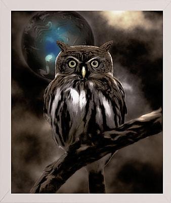 Bloomsbury Market 'Night Owl' Graphic Art Print; Affordable White Medium Framed Paper