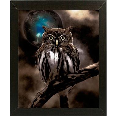 Bloomsbury Market 'Night Owl' Graphic Art Print; Affordable Brazilian Walnut Medium Framed Paper