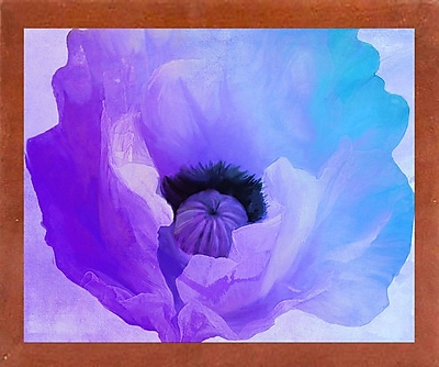 Ebern Designs 'Poppy Gradient IV' Print; Affordable Canadian Walnut Medium Framed Paper