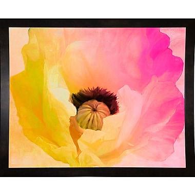 Ebern Designs 'Poppy Gradient II' Print; Affordable Black Medium Framed Paper