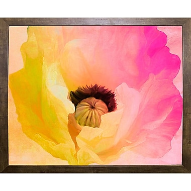 Ebern Designs 'Poppy Gradient II' Print; Cafe Mocha Framed Paper