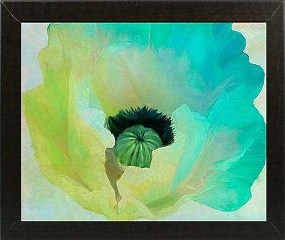Ebern Designs 'Poppy Gradient I' Print; Affordable Brazilian Walnut Medium Framed Paper