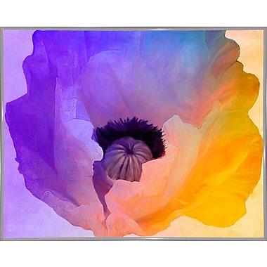 Ebern Designs 'Poppy Gradient III' Print; White Metal Framed Paper